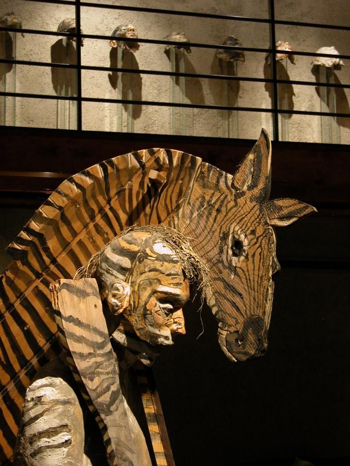 23  zebre